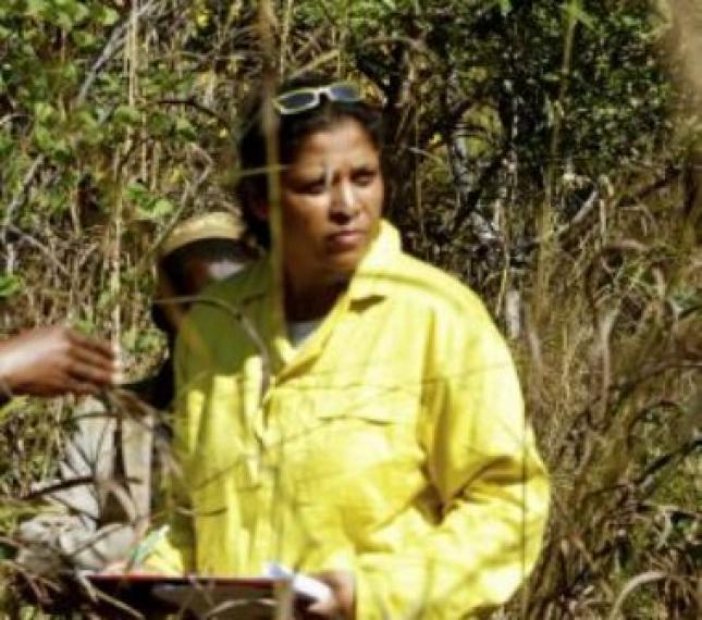 Natasha Ribeiro oferece à UEM livro sobre as florestas de Miombo