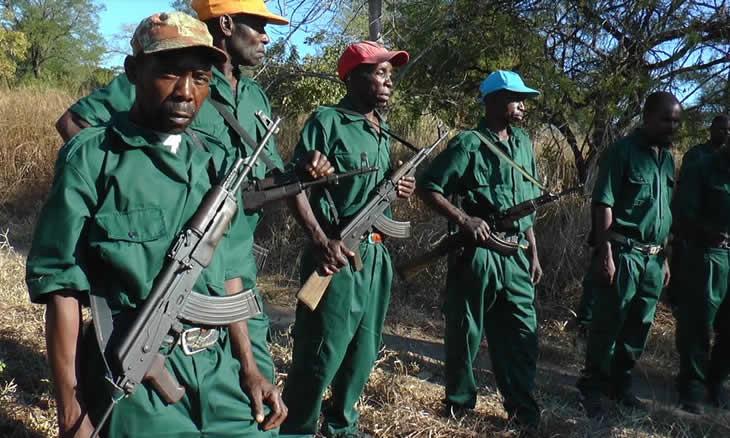 Financiadores da Junta Militar residem  na Beira