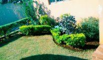 Jardineiro profissional Maputo - imagem 1