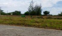 Terreno 40/40 logo na estrada n6 Dondo - imagem 1